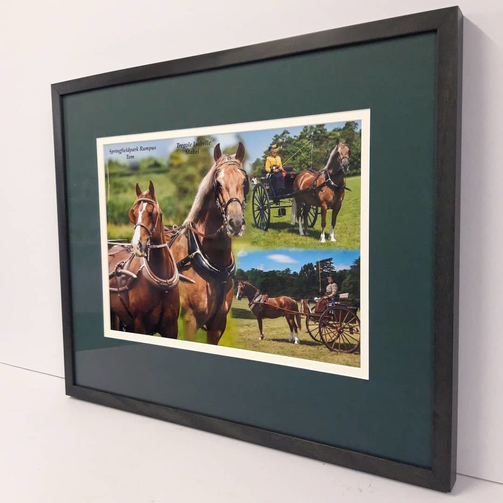 Carriage Horse Photo Framing
